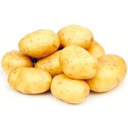Patata eco  (Kg)