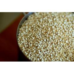 Quinoa Eco a granel (100gr)