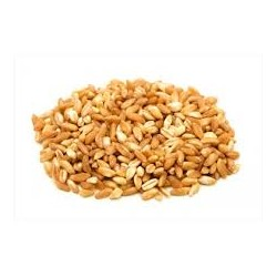 Espelta grano Granel (100 g)
